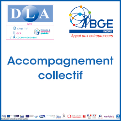 Accompagnement collectif DLA
