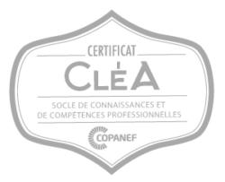Label certificat cléa